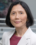 Professor Marina Lao testified before the House Judiciary Committee, Subcommittee on  Intellectual Property, Competition, and the Internet, regarding litigation as an anticompetitive predatory strategy...